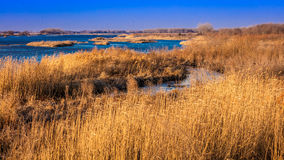 MASZERUJE 8, 2017, STANY ZJEDNOCZONE - krajobraz Platte rzeka, Środkowy Zachód - Uroczysta wyspa Nebraska, PLATTE rzek, - fotografia stock