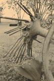 maszyna rolnicza Zdjęcie Stock