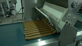 Maszynowy działanie Na produkci przemysłowa zdjęcie wideo