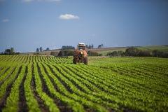 Maszynowy działanie przy arachidu polem pod niebieskim niebem Obrazy Stock