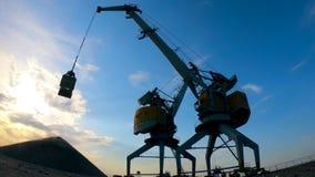 Maszyny przemysłowe transportują żwir na zewnątrz zbiory