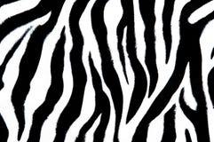 Matéria têxtil da zebra Fotos de Stock Royalty Free