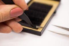 Matériaux pour l'extension de cil Brosses, accessoires pour des prolongements de cil image stock