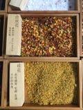Matériel d'herbe médicinale chinoise photographie stock libre de droits