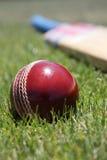 Matériel de cricket. photo libre de droits