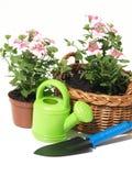 Matériel de jardin, d'isolement photos stock