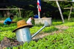 Matériel de jardinage Photographie stock