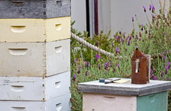 Matériel de l'apiculture de cru Image stock