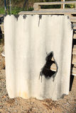Matériel de toiture endommagé d'amiante Photo libre de droits