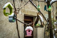 Mat för fåglar i vintern Arkivfoton