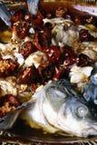 mat för fisk för chiliporslin läcker Royaltyfri Fotografi