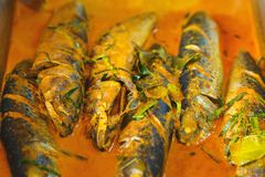 Mat för gata för röd havskattcurryfisk thailändsk Royaltyfri Fotografi