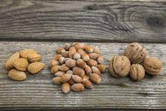 mat inramniner blandad nuts serie Arkivfoton