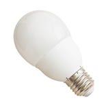 Mat Light Bulb Royalty Free Stock Photo
