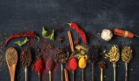 Mat och kryddor royaltyfri bild