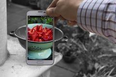Mat och teknologi Arkivfoto