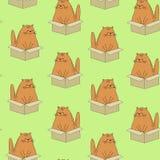 Mat?rias t?xteis criativas bonitas Imagem de gatinhos originais O animal de estimação está sentando-se na caixa Papel de parede e ilustração stock
