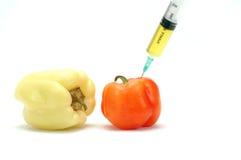mat som ändras genetiskt Arkivbild