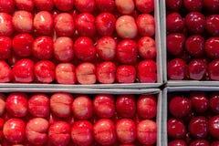 Mat Typ av den mogna söta körsbäret i en packe som delas in i fyra celler royaltyfri foto