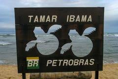 Projeto Tamar at Praia do Forte, Brazil. Mata de São João, Bahia/ Brazil - July 5, 2005 -  Projeto TAMAR exposition center at Praia do Forte stock image