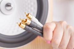 Mata in RCA kontaktdon på baksidan av högtalaren Royaltyfri Bild
