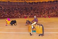 Matador and bull in bullfighting at Madrid Stock Photos