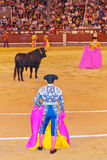 Matador and bull in bullfighting at Madrid Royalty Free Stock Images