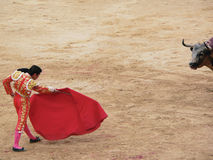 Matador facing bull 2. A matador in red traje de luces faces a bull in the ring in Pamplona Stock Photography