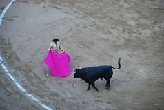 Matador Spanish bullfighting royalty free stock image