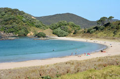 Matai Bay Karikari Peninsula - New Zealand Royalty Free Stock Image