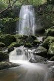matai för 8 falls Royaltyfria Foton