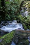 Matai falls 1. Matai falls, Catlin, South Island, New Zealand Royalty Free Stock Photos