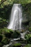 Matai falls 11. Matai falls, Catlin, South Island, New Zealand Royalty Free Stock Photo