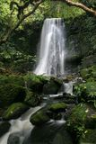 Matai falls 12. Matai falls, Catlin, South Island, New Zealand Royalty Free Stock Photography