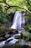 Matai falls. In Catlins nature reserve in New Zealand royalty free stock images