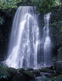 Matai falls Stock Photos