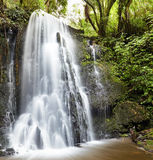 Matai Falls, New Zealand Royalty Free Stock Photo