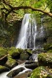 Matai Falls, New Zealand royalty free stock photos
