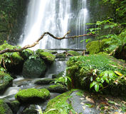 Matai waterfall Royalty Free Stock Photos