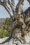 Matala carving. Details of Famous hippie tree in the center of Matala city , Crete , Greece , Europe Royalty Free Stock Photos