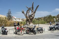 Matala carving. Famous hippie tree in the center of Matala city , Crete , Greece , Europe Royalty Free Stock Photos