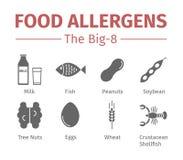 Matallergen sänker symboler En grupp av de åtta viktiga allergenic foodsna ses ofta till som Bigen-8 royaltyfri illustrationer