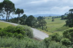 Matamata landscape Royalty Free Stock Photo