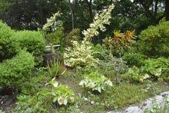 Matanao,南达沃省,菲律宾的市政霍尔的前提的栽培植物 图库摄影