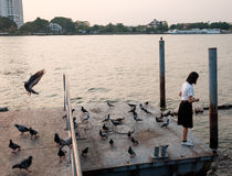 Matande fisk för kvinnastudent på port Arkivfoto