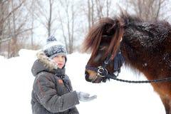 Matande häst Arkivbilder