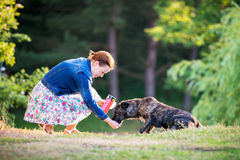 Matande hund Royaltyfri Foto