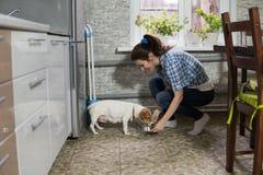 Matande hund för ung kvinna royaltyfri foto