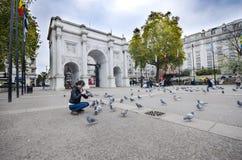 Matande peageons för kvinna framme av MarbWoman matande peageons framme av marmorbågemonumentet i Londonle bågemonument i London Fotografering för Bildbyråer