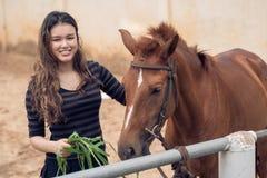 Matande ponny Arkivfoto
